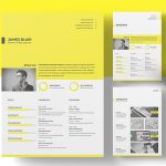 Multifunctional Resume Template