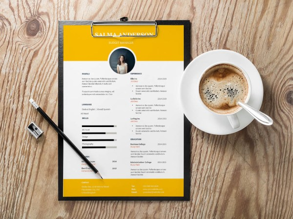 Free Budget Manager Resume Template for Job Seeker