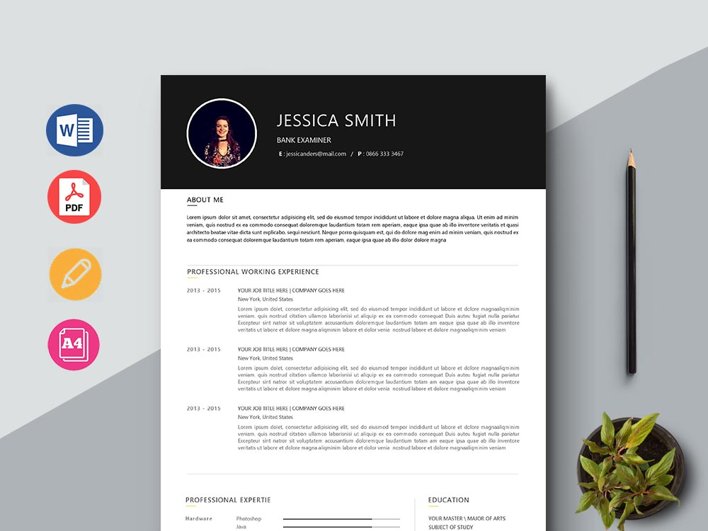 Free Bank Examiner Resume Template