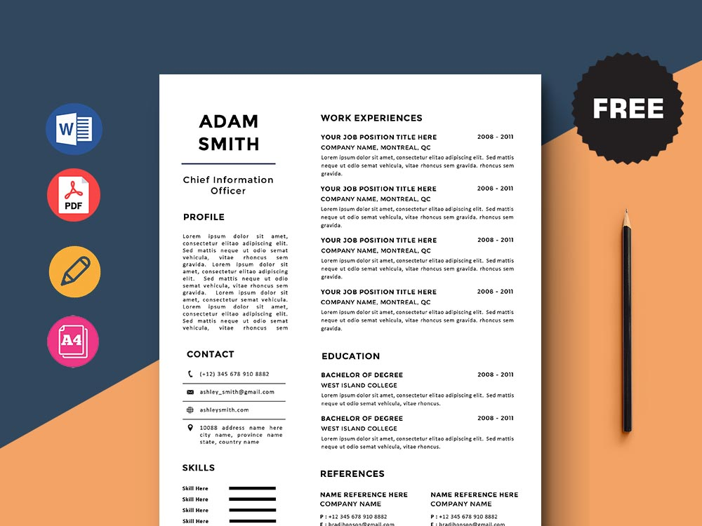Free Chief Information Officer Cio Resume Template With