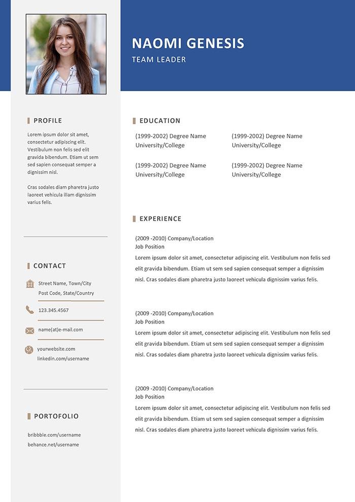 Team Leader Resume