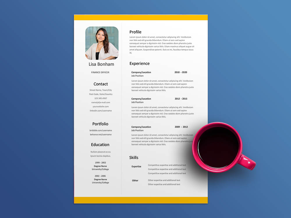 Free Finance Officer Resume Template