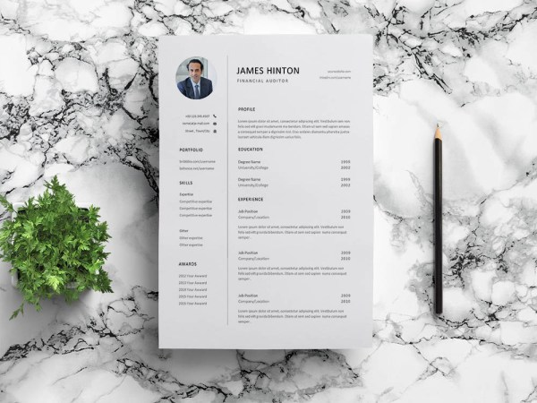 Free Financial Auditor Resume Template