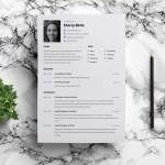 Editable Figma Resume