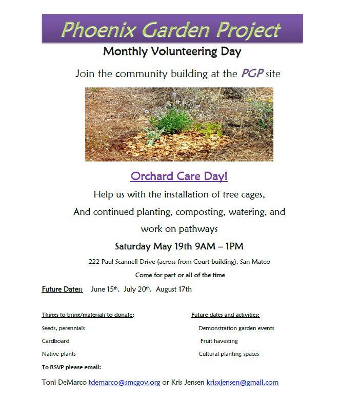 phoenix garden.JPG