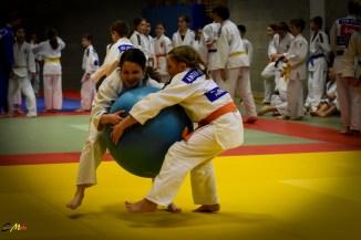 judolle-dag-zandhoven-7-januari-2017-14