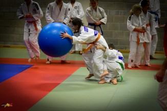 judolle-dag-zandhoven-7-januari-2017-165