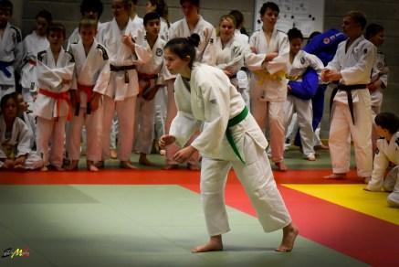 judolle-dag-zandhoven-7-januari-2017-207