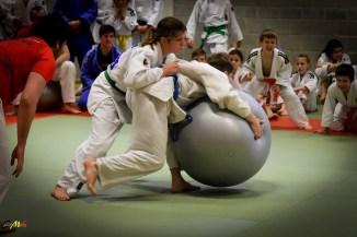 judolle-dag-zandhoven-7-januari-2017-231