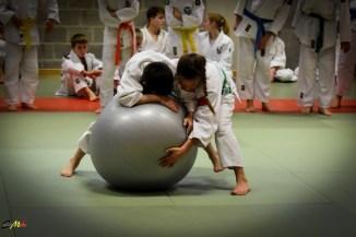 judolle-dag-zandhoven-7-januari-2017-65
