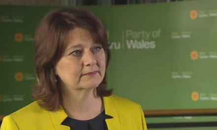 Plaid Cymru leader Leanne Wood 'not convinced' by UK Government's Russia action | Wales – ITV News