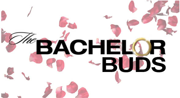 Bachelor Buds: S2 E1