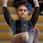 Junior Avery Wilson prepares to transition from the low bar to the high bar. Photo by Kate Nixon