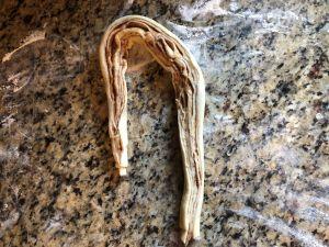 Cinnamon Almond Knotted Bread - Make a U Shape