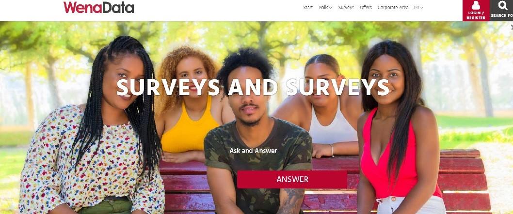 WenaData website screenshot - Seedstars Maputo