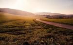 Seedstars DOEN Land Restoration Prize