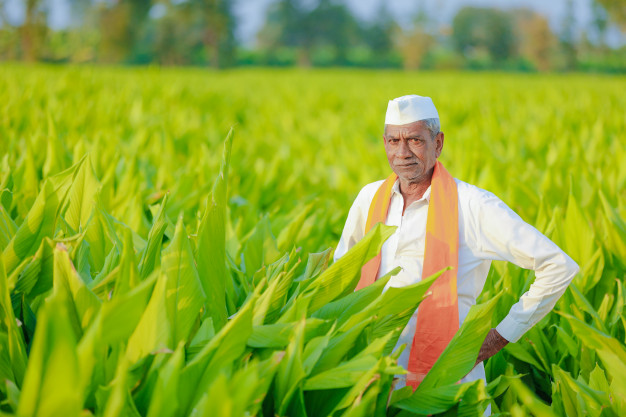 Government Agrees To Bring Changes In Fasal Bima Scheme To Make It Voluntary For Farmers