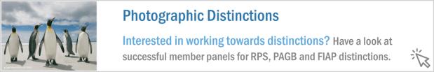 Button_Distinctions
