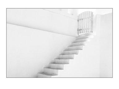 Oi Steps