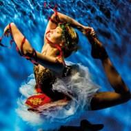 sps ribbon water realm ballerina vlastimil blaha-scotland