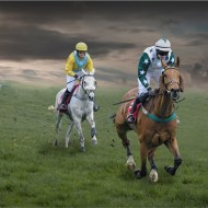 Commended-Two Horse Race-Len Pugh DPAGB