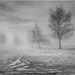 Highly Commended-Misty Morn-Mick Jennings