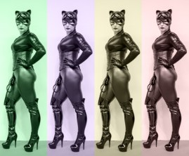 18 - Catwoman - Mike Williams
