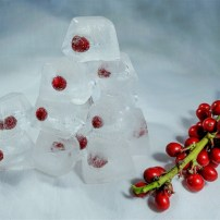 Second Berries on the Rocks Wolfgang Starke