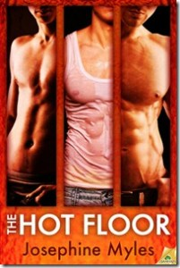 Review: The Hot Floor by Josephine Myles