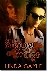 Review: A Shadow of Wings by Linda Gayle