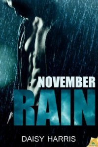 Review: November Rain by Daisy Harris