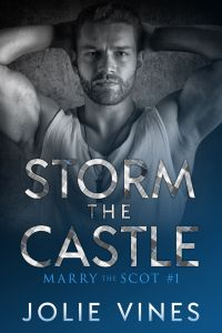 Cover Reveal- Storm the Castle by Jolie Vines