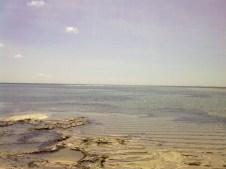 Oceano e coralli