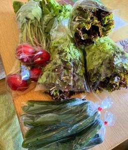 河内長野すまいる食堂野菜届きました