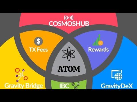 【COSMOS】ATOMの価格なぜなかなか上がらないのか⁉️COSMOSは始まったばかり‼️ COSMOS Core開発者jackzampolin氏語る‼️しゅちゅわんの暗号資産情報