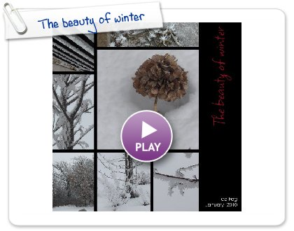 Click to play this Smilebox collage: The beauty of winter