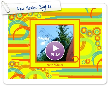 Click to play New Mexico Sights