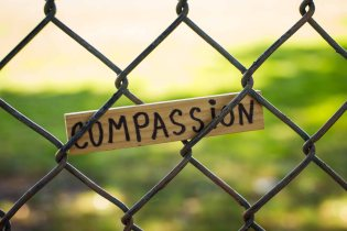 compassion fence