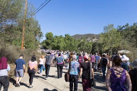walking meditation path