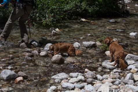 alps creek crossing