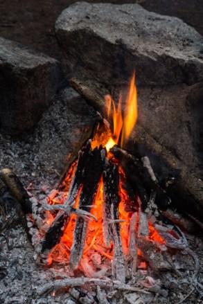 fire's pit