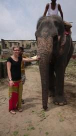 My first encounter with an elephant/ Meine erste Begegnung mit einem Elefanten