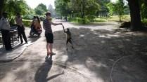 Me feeding a monkey