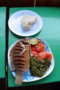 Freshly fried fish