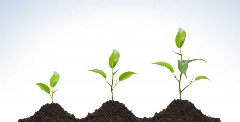 成長する,自分を変える