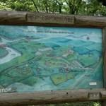 休暇村 帝釈峡くぬぎの森でのキャンプ クワガタやカブトムシは捕れる?【動画あり・口コミ】