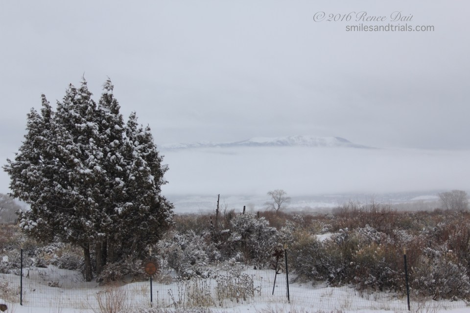 1081 snow day