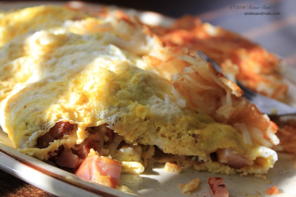 5841-all-american-diner-omelet