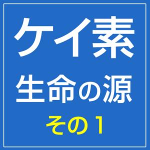 画像_r1_c1