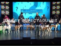 concurso tv quiztion 007